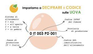 leggere il codice uova